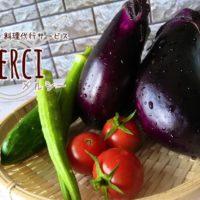 家庭菜園野菜画像